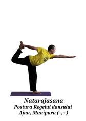 Natarajasana - Postura Regelui dansului