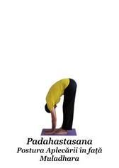 Padahastasana - Postura Aplecării în față