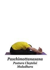 Paschimottanasana 1 - Postura Clestelui