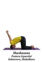 Shashasana - Postura Iepurelui