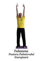 Talasana - Postura Palmierului