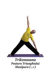 Trikonasana - Postura Triunghiului