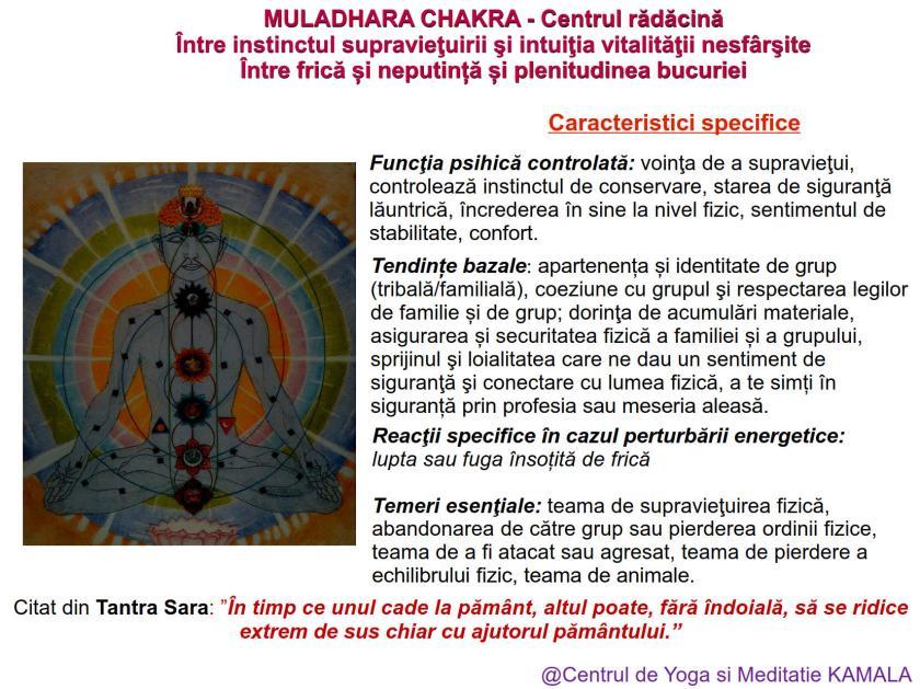 1.MULADHARA CHAKRA bun_2