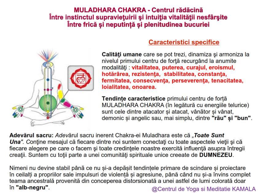 1.MULADHARA CHAKRA bun_7