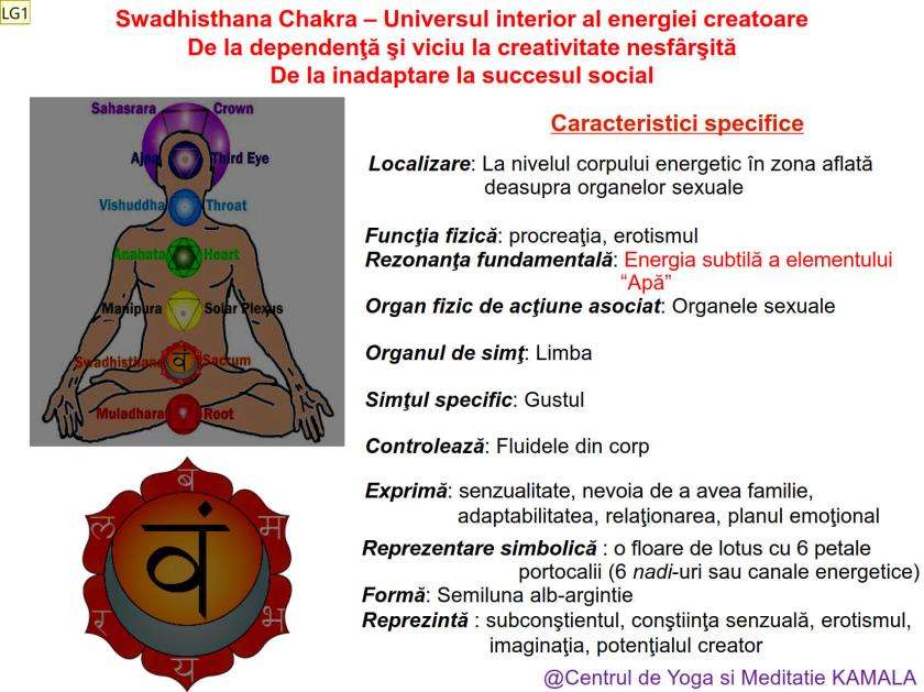 2.SWADHISTHANA CHAKRA bun_1