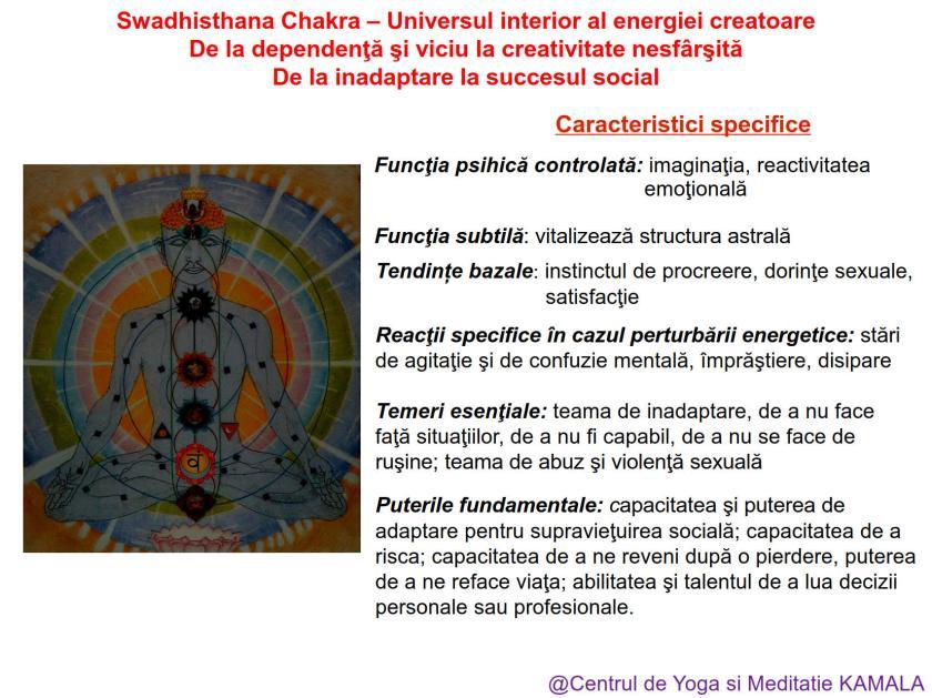 2.SWADHISTHANA CHAKRA bun_2
