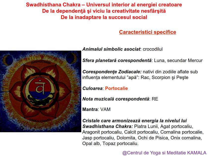 2.SWADHISTHANA CHAKRA bun_6