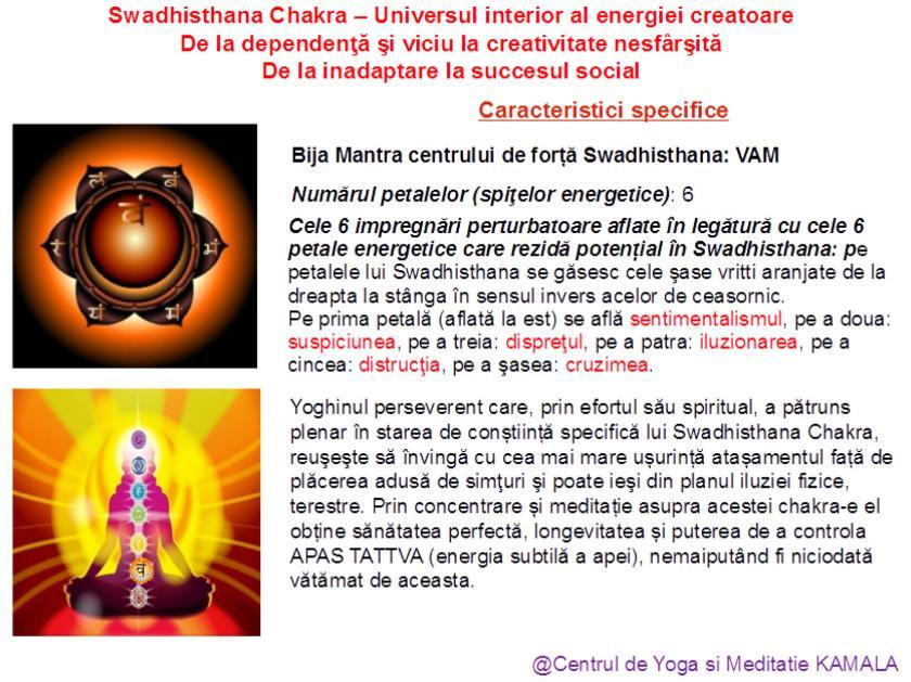 2.SWADHISTHANA CHAKRA bun_7