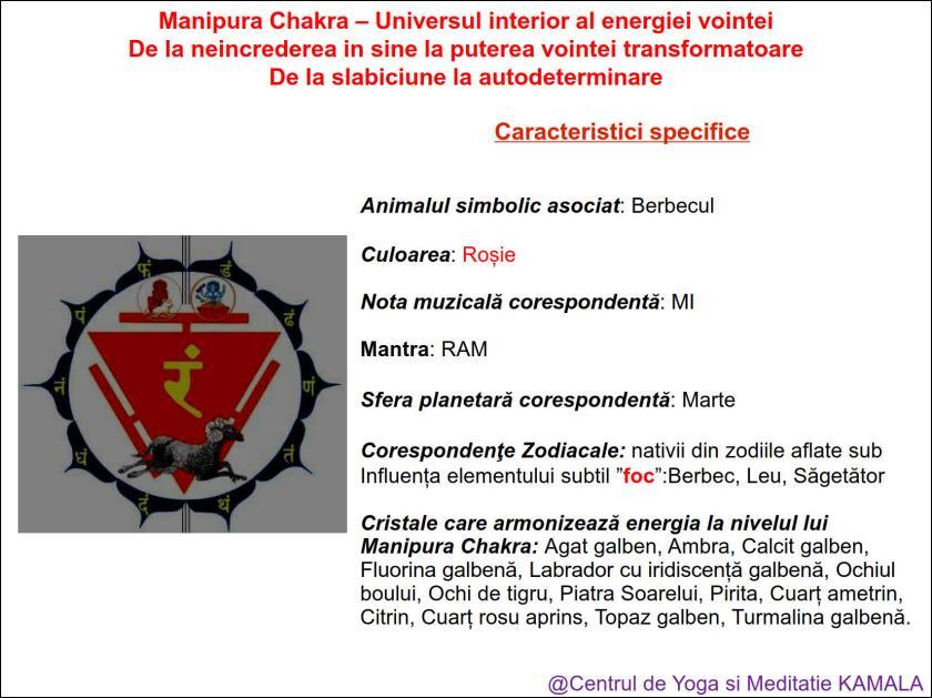 3.MANIPURA CHAKRA bun_6