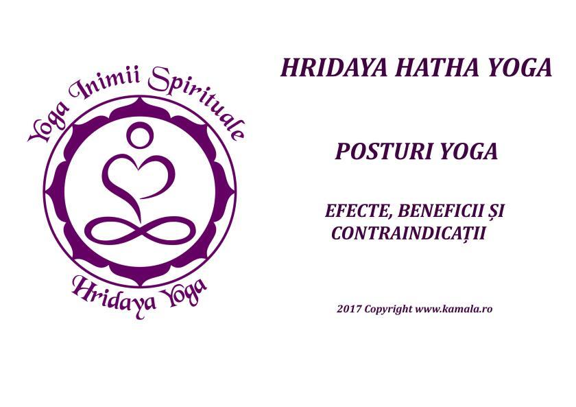 Brosura Efecte si beneficii ale posturilor Yoga Landscape cu poze_1