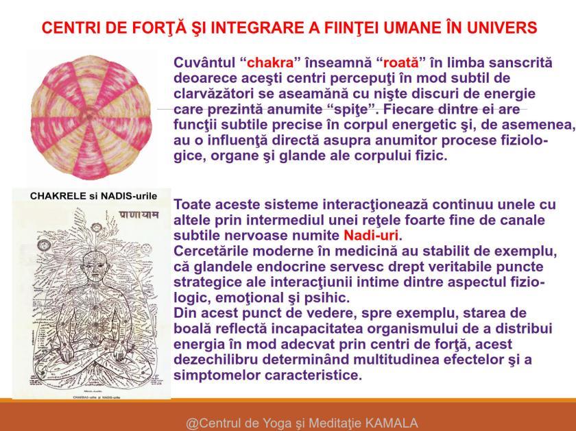 CENTRI DE FORTA - SINTEZA_5