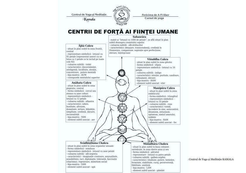 CENTRII ENERGETICI_1